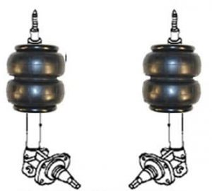1985-1988 Nissan Maxima Rear Air Suspension, Strut Kit (no fittings)