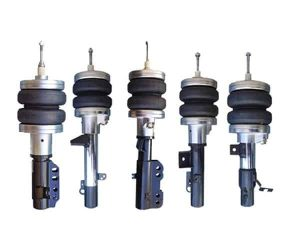 2003-2011 Mercury Grand Marquis, Crown Victoria Front Air Suspension, Strut Kit (no fittings)